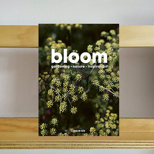 Bloom Magazine - Issue 6 - Reading Room