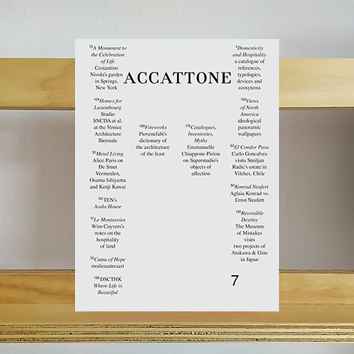 Accattone Magazine - Issue 7 - Reading Room