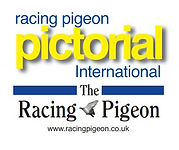 Racing Pigeon Logo new.JPG