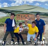 そらまめファーム沖縄