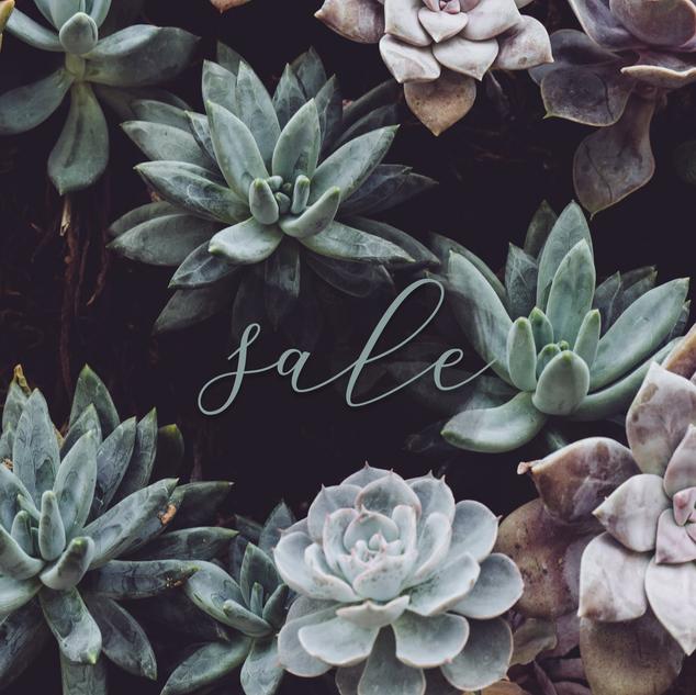 sale_greenery.png