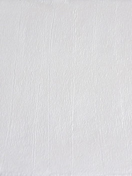 White Metallic Board 3.jpg