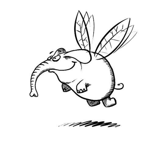Mücke Elefant.jpg