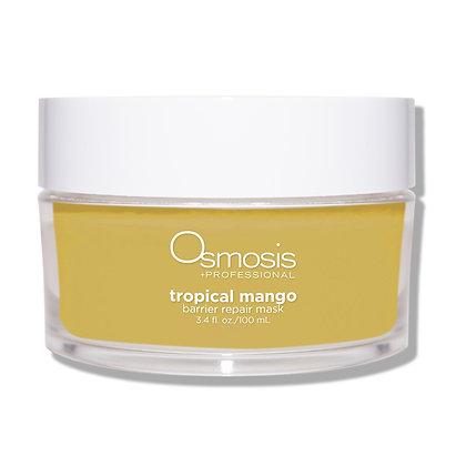 Tropical Mango Barrier Repair Mask