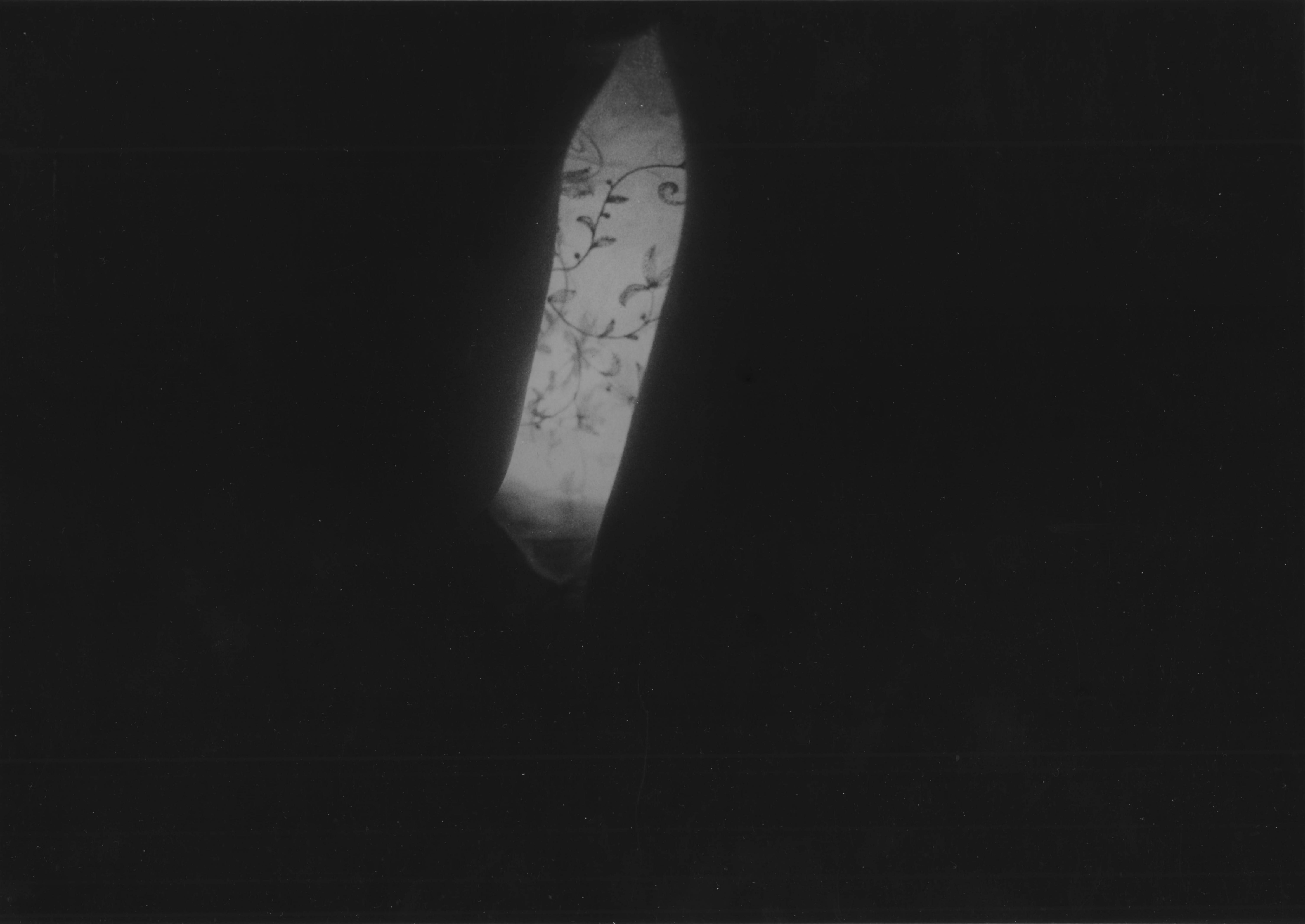 pic9.1