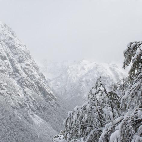 Jakob en invierno