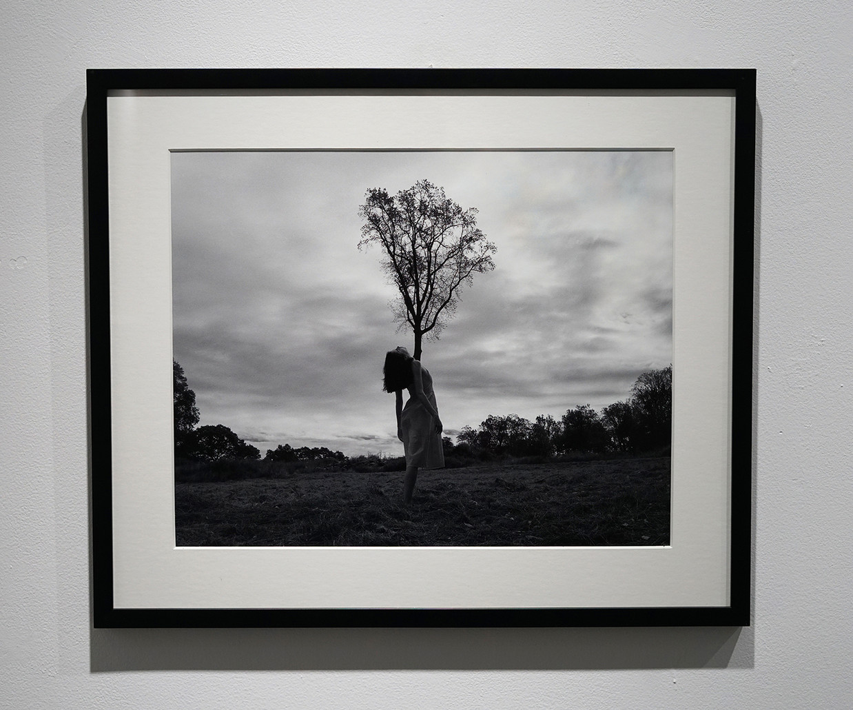Root, 2020, Archival Inkjet Print, 16 x 20 inches.