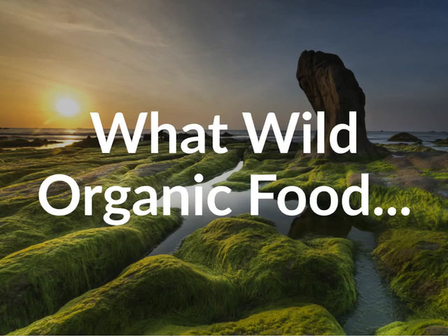 The Wonderful Benefits of Wild Crafted Blue Algae