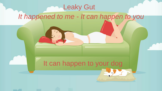 Leaky Gut Syndrome and Your Pet