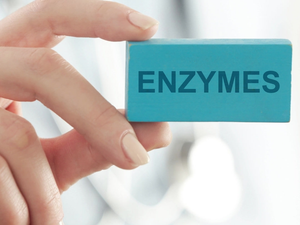 Enzymes and Your Pet's Health.