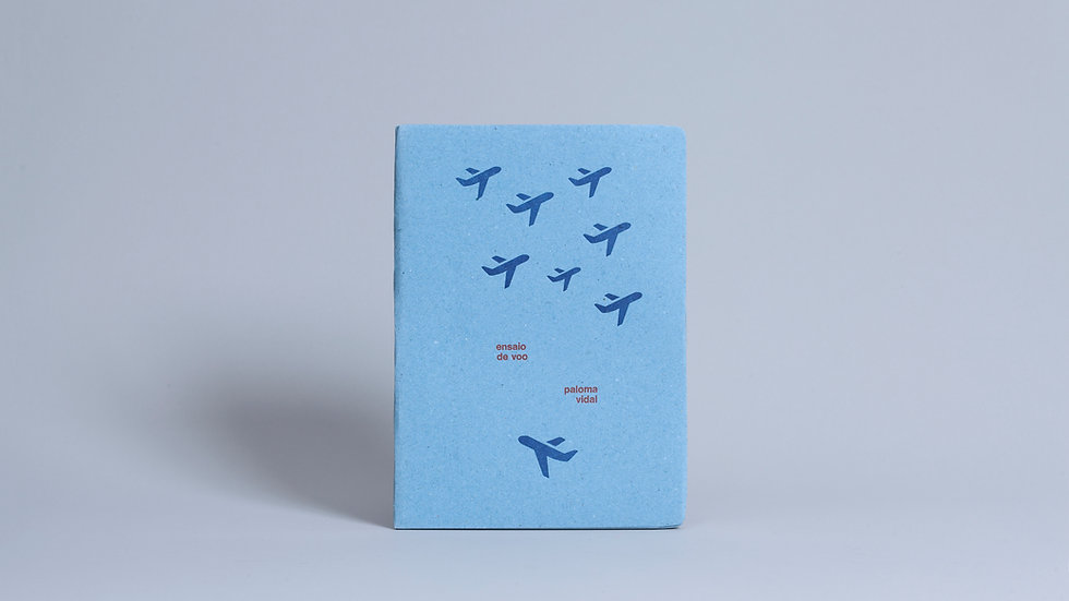 Ensaio de voo / Paloma Vidal