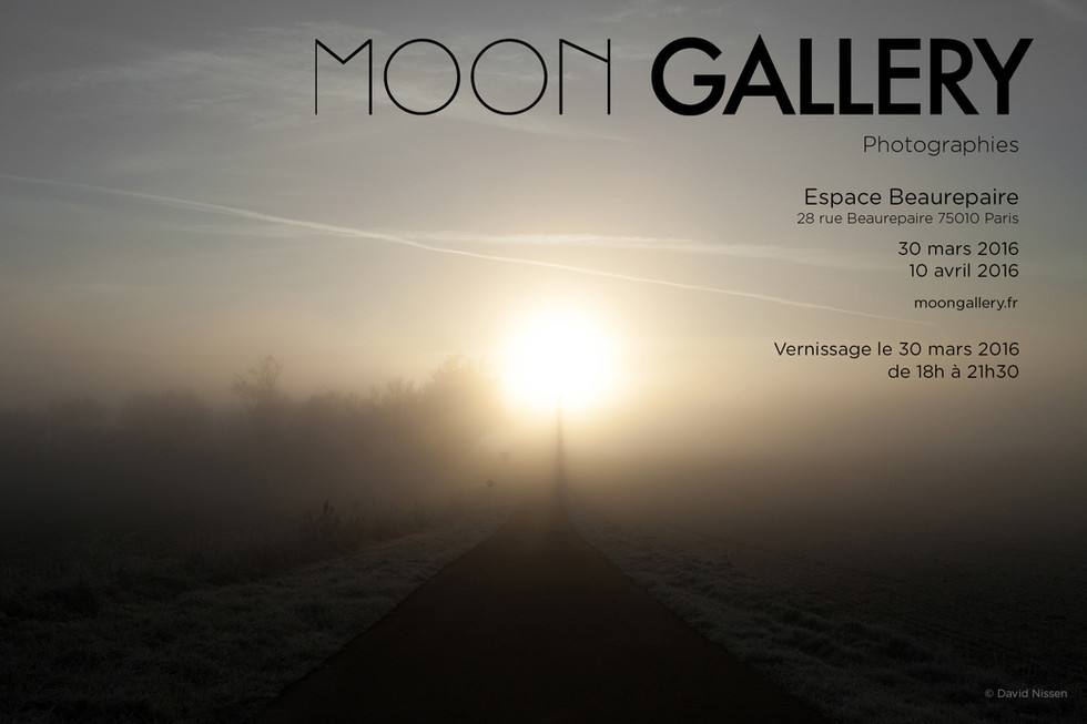 MOON GALLERY EXPOSITION    30/03/2016 > 10/04/2016