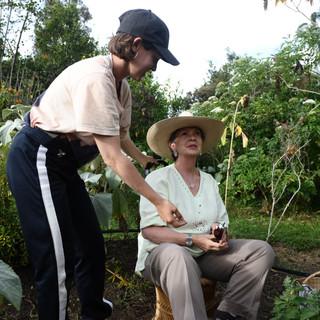 Paula Almiron - Trabajo de residencia con el sonido de las plantas