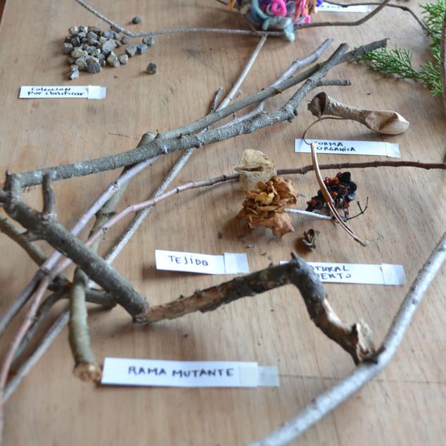 Materiales recolectados en las caminatas