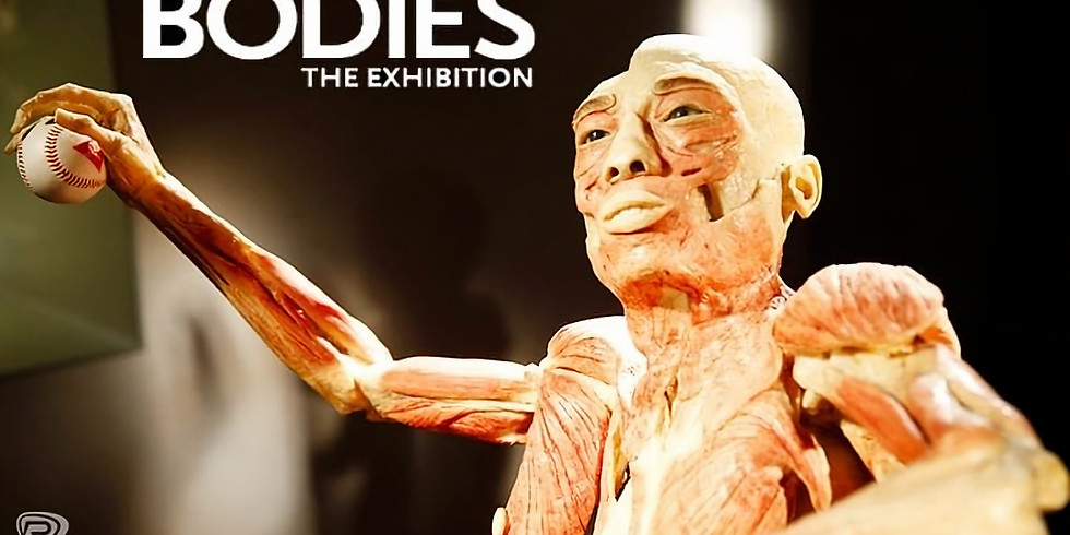 Bodies the Exhibition at Atlantic Station