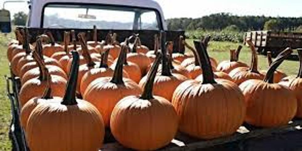 Bennett Farms Pumpkin Patch
