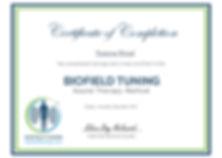 Vanessa Wood Practitioner Training Certi