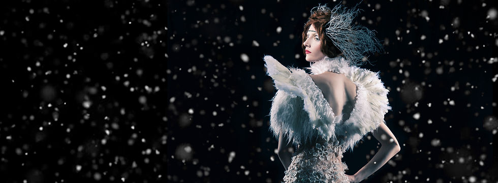 Facebook Banner Ice Queen Fur.jpg