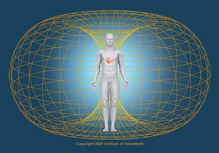 Human electromagnetic field.png