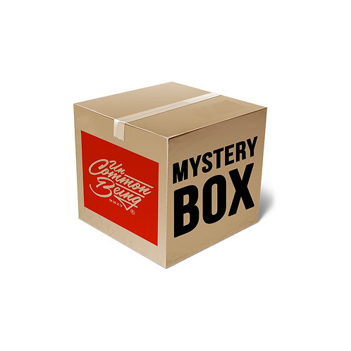 SS20 Large Mystery Box