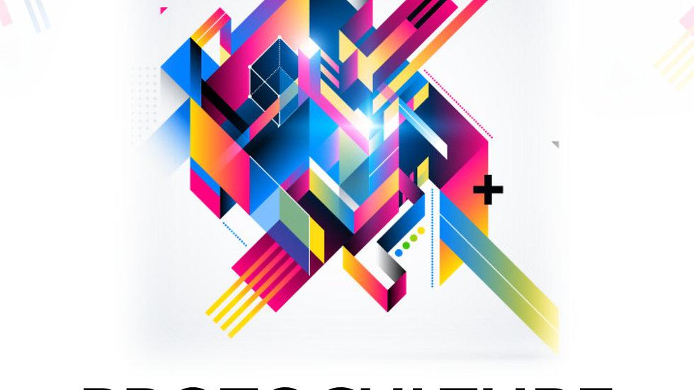 """DJ """"D.O.C."""" - Protoculture (Original Mix)"""