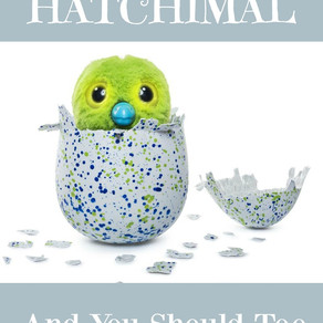 Everyone Wants a Hatchimal, You Should Too