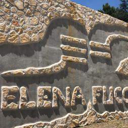 Elena-Fucci-1.jpg