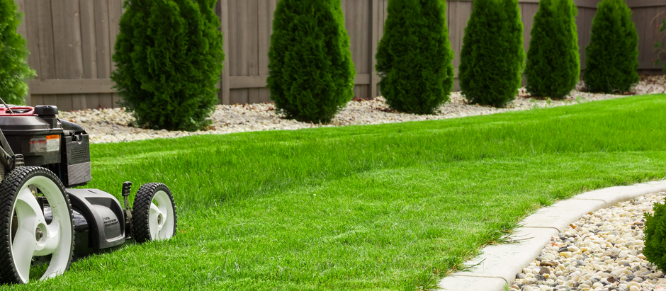 5 Tips to Help you Choose the Right Landscaper