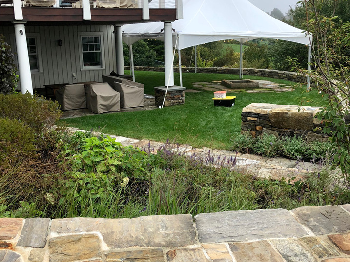 A Small Backyard Wedding