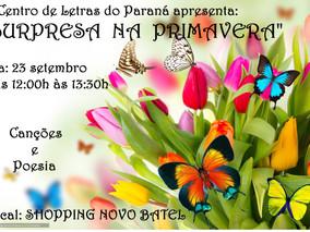 """""""Surpresa na Primavera"""""""