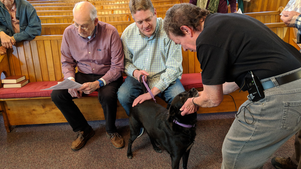 Blessing of Animals 2018 at St Mary's