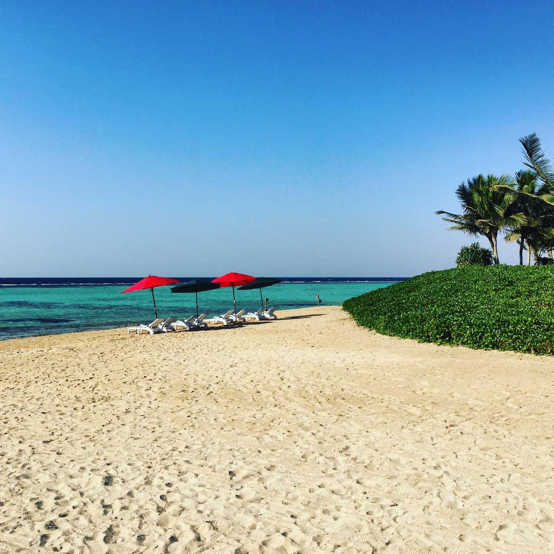 Sunbathing on a bueautiful beach in Saudi Arabia