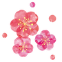 ume_water.png