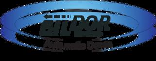 Gildor-Logo1-300x117.png