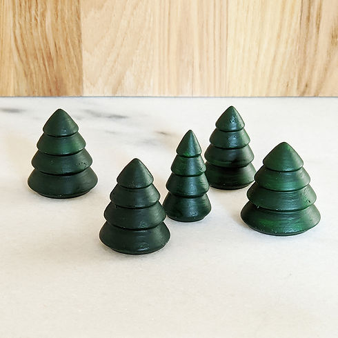 NPR- Scenery pine trees