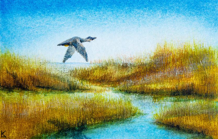 Watercolor Practice 10