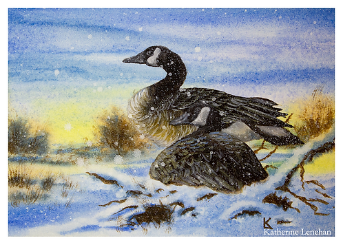 Greeting Cards - Winter Snowy Geese