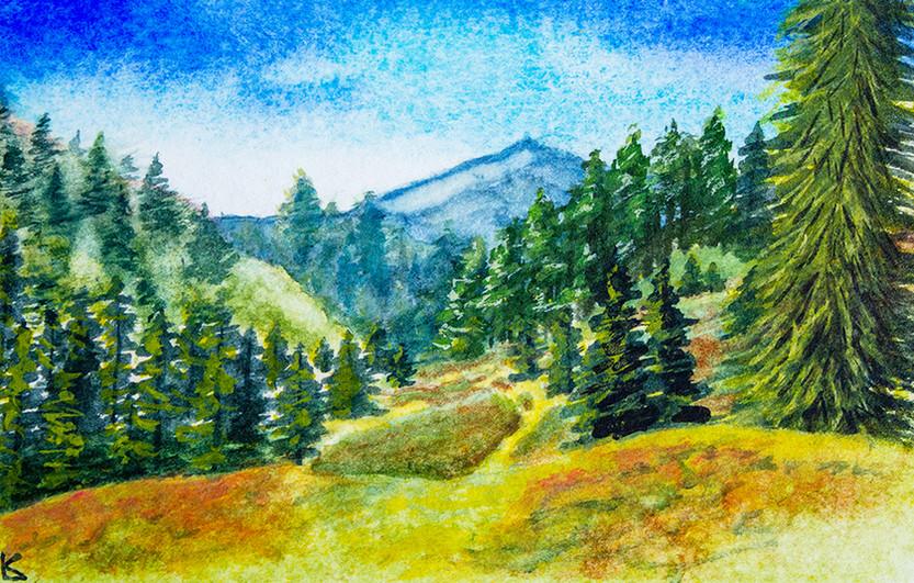 Watercolor Practice 9