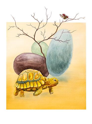 Original | Tortoise of the Sky