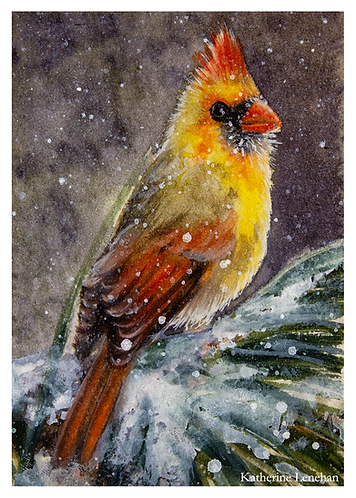 Greeting Cards - Winter Snowy Cardinal