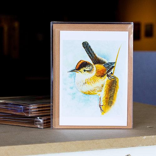 Greeting Cards - Marsh Wren