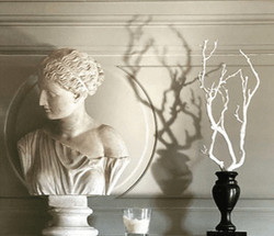Buste plâtre blanc