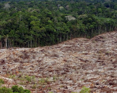 """Activistas protestan frente al Consejo Europeo por el """"ecocidio"""" del Amazonas"""