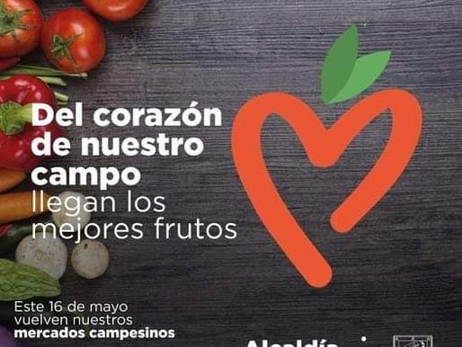 Regresan los Mercados Campesinos Bello Fruto al parque principal de los bellanitas