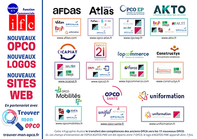 Infographie - Kit OPCO 2021 (1).png