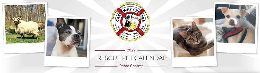 2022 Calendar Contest Banner.jpg