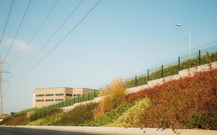 Yeşilvadi Sarıtaş Fabrika