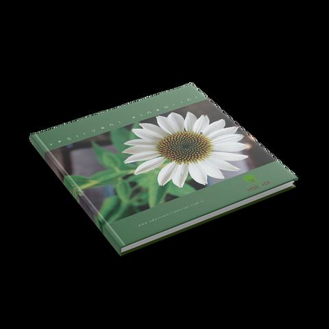 Yeşilvadi Kitabı 3