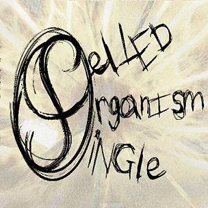 SINGLE_CELLED_ORGANISM_Splinter_cover.jp