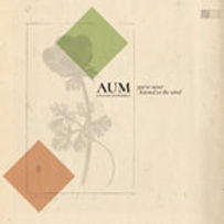 AUM GRAND ENSEMBLE_You've never listened